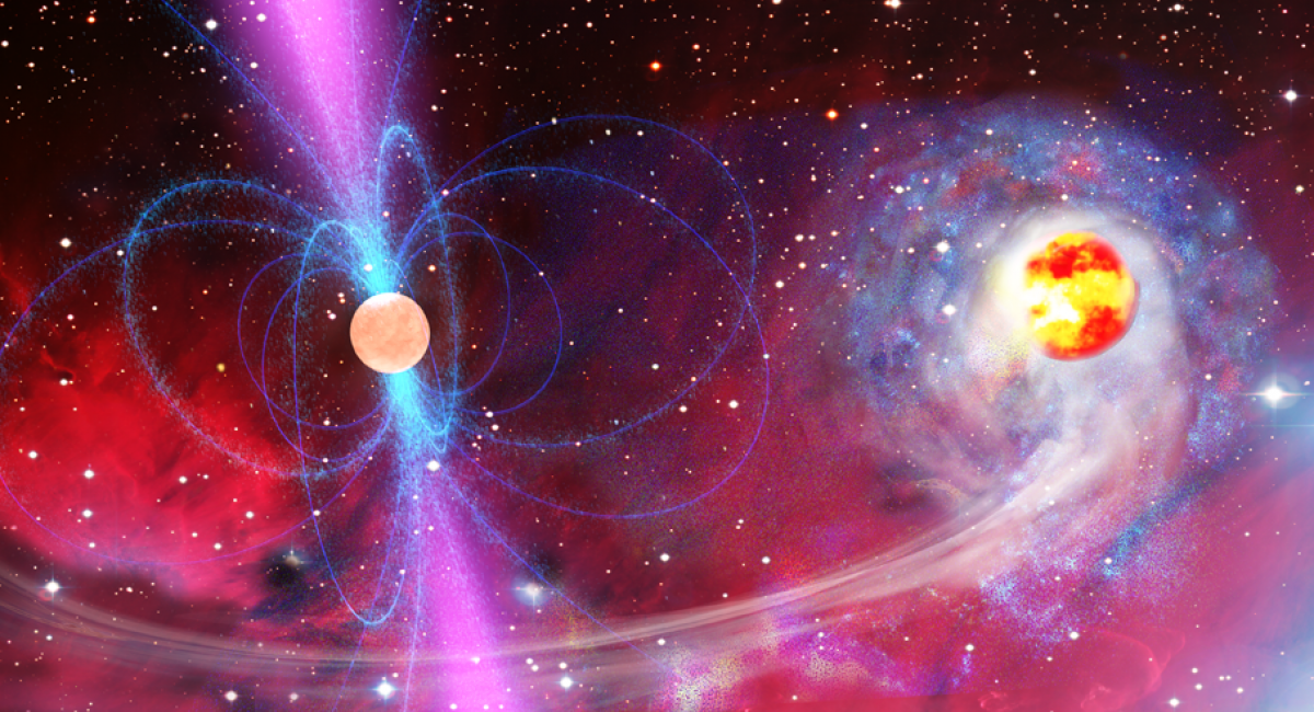 Pulsar and Star Remnant